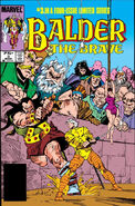 Balder the Brave Vol 1 3
