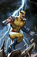 Marvel Tales Wolverine Vol 1 1 Virgin Variant