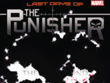 Punisher Vol 10 20