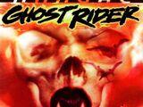 Ghost Rider Annual Vol 2 1