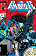 Punisher Vol 2 13