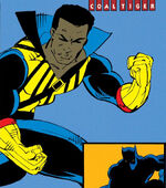 T'Challa (Earth-355) from Avengers Vol 1 360 0001