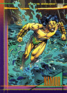 Namor McKenzie (Earth-616) from Marvel Universe Cards Series IV 0001