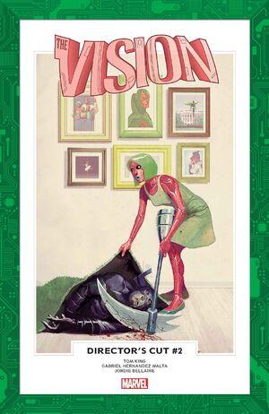 Vision Director's Cut Vol 1 2