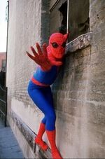 Peter Parker (Earth-730911) from The Amazing Spider-Man (TV series) 0001