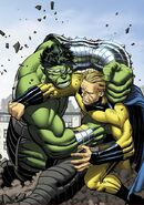 World War Hulk Vol 1 5 Textless Variant