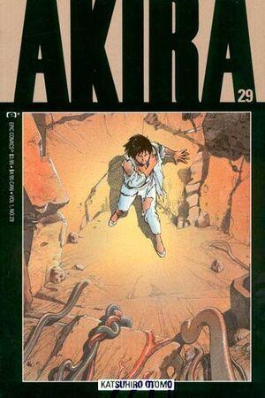 Akira Vol 1 29