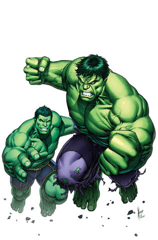 File:Generations Banner Hulk & The Totally Awesome Hulk Vol 1 1 Keown Variant Textless.jpg