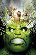 Incredible Hulk Vol 1 711 Textless