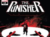 Punisher Vol 12 14