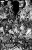 Uncanny X-Men Vol 5 1 Quesada Hidden Gem Sketch Variant