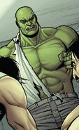 Bruce Banner (Earth-616) from Incredible Hulk Vol 3 8 001