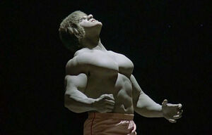David Banner (Earth-400005) from The Incredible Hulk (TV series) Season 4 2 001