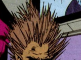 Porcal (Earth-616)