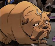 Lockjaw (Earth-5631) Thor and the Warriors Four Vol 1 1
