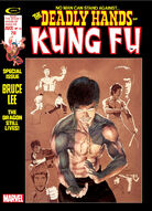 Deadly Hands of Kung Fu Vol 1 14
