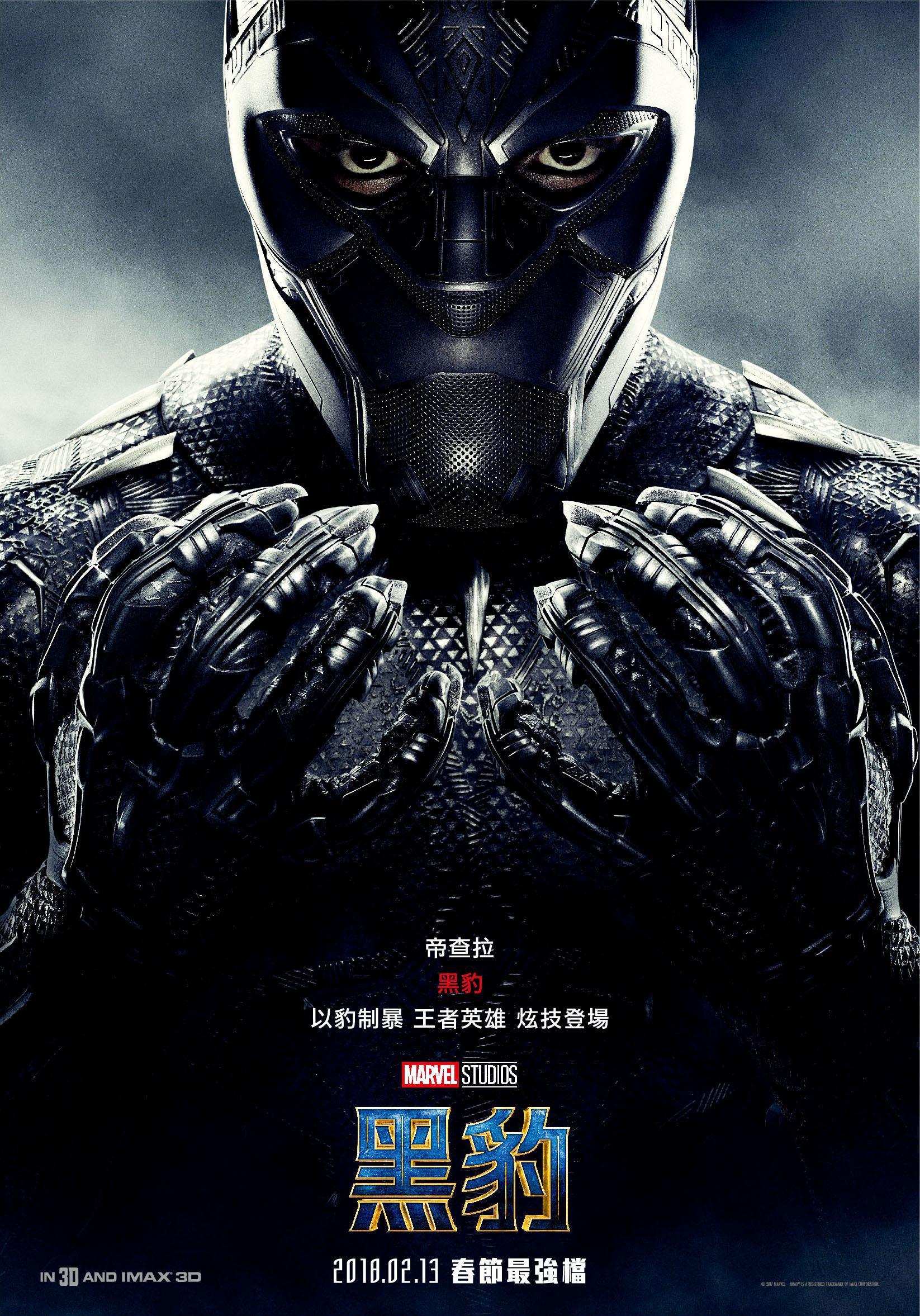 Image - Black Panther (film) poster 015.jpg   Marvel ...