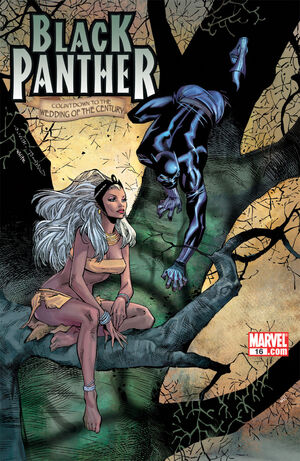 Black Panther Vol 4 16