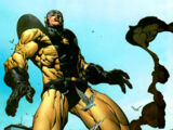 Yellowjacket's Suit/Gallery