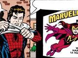 Spider-Man Newspaper Strips Vol 1 2006
