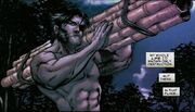 Wolverine Vol 3 40 page - James Howlett (Earth-616)