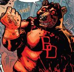Beardevil (Earth-21376) from Secret Wars Too Vol 1 1 001
