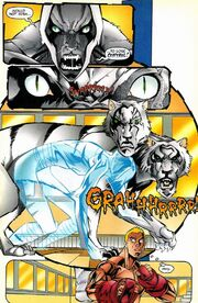 Daniel Rand, White Tiger (Evolved Tiger) (Earth-616) from Heroes from Hire Vol 1 3