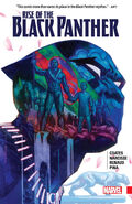 Rise of the Black Panther TPB Vol 1 1