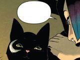 Rufus (Cat) (Earth-616)