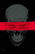 Punisher Vol 11 1 Textless