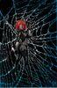 Black Widow Vol 6 3 Jones Variant Textless