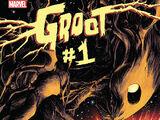 Groot Vol 1 1