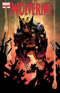 Wolverine Vol 2 300