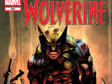 Wolverine Vol 2 300