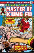 Master of Kung Fu 38