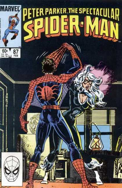 Peter Parker, The Spectacular Spider-Man Vol 1 87.jpg