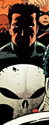 Frank Castle (Earth-12177) from Dark Avengers Vol 1 179 0001