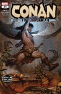 Conan the Barbarian Vol 3 14