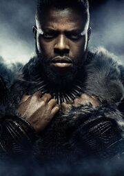 Black Panther (film) poster 014 Textless