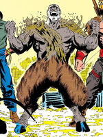 Nanabozho (Earth-616) from Doctor Strange, Sorcerer Supreme Vol 1 25 0001