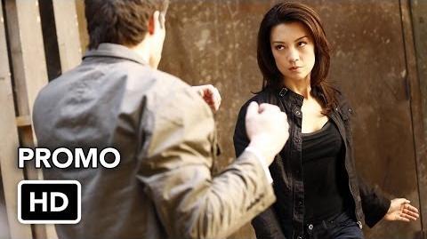 Marvel's Agents of S.H.I.E.L.D. Season 1 12