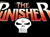 Punisher Vol 4