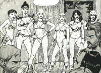 Iron Damsels (Earth-616) from Savage Sword of Conan Vol 1 111 0001
