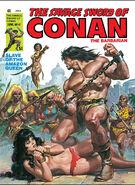 Savage Sword of Conan Vol 1 41