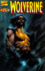 Wolverine Vol 2 125 Lee Dynamic Forces Variant