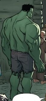 Bruce Banner (Afterlife) (Earth-15513) from Mrs. Deadpool and the Howling Commandos Vol 1 2 001