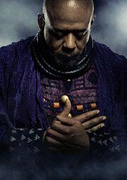Black Panther (film) poster 010 Textless