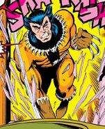 James Howlett (Earth-616) from Iron Fist Vol 1 15 0001