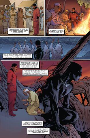 File:Birnin Kashin from Black Panther Vol 6 13 001.jpg