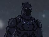 T'Challa (Earth-12041)